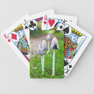 Group ink mushrooms near forest path in fall bicycle playing cards