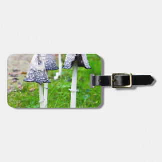 Group ink mushrooms near forest path in fall luggage tag