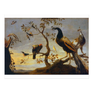 Group of Birds Perched on Branches  Frans Snyders Postcard