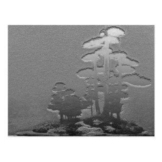 Group of Bonsai Trees in Metallic Gray Postcard