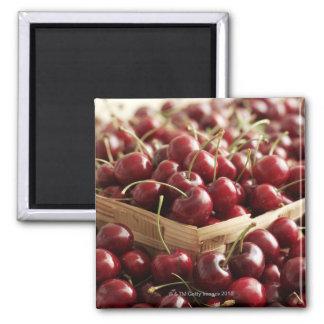 Group of cherries in punnett square magnet