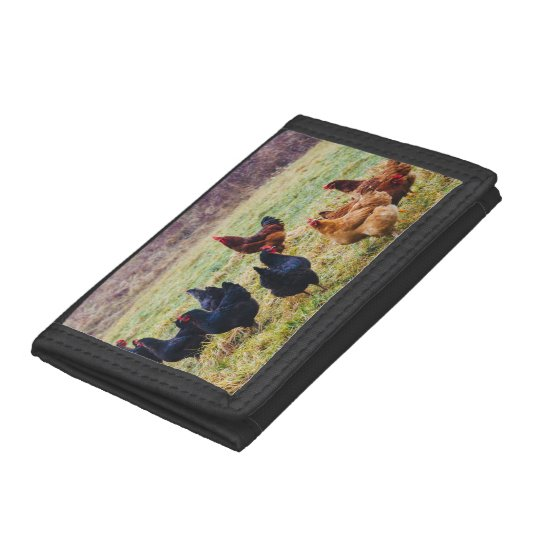 Group Of Chickens In Grass Trifold Wallets