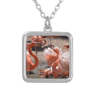 Group of Cuba flamingos Silver Plated Necklace