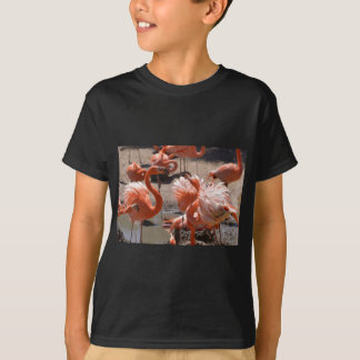 Group of Cuba flamingos T-Shirt
