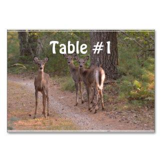 Group of Deer Card