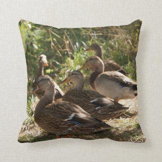 "Group Of Ducks, Throw Pillow 16"" x 16"""