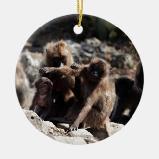 Group of gelada baboons (Theropithecus gelada) Ceramic Ornament