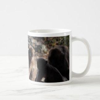 Group of gelada baboons (Theropithecus gelada) Coffee Mug