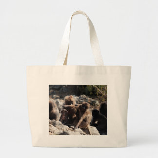 Group of gelada baboons (Theropithecus gelada) Large Tote Bag