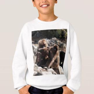 Group of gelada baboons (Theropithecus gelada) Sweatshirt