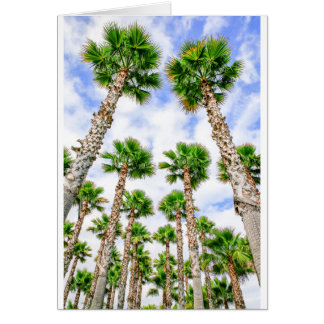 Group of high straight palm trees card