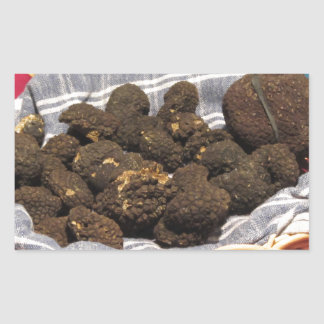 Group of italian expensive black truffles