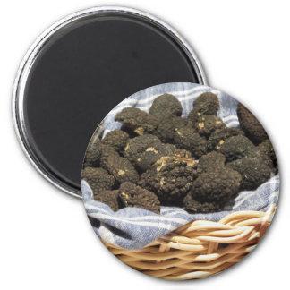 Group of italian expensive black truffles magnet