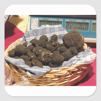 Group of italian expensive black truffles square sticker