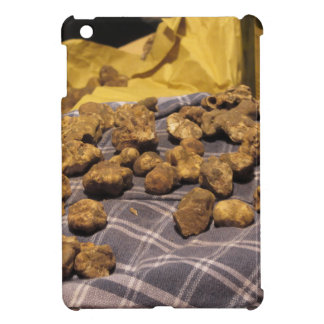 Group of italian expensive white truffles case for the iPad mini