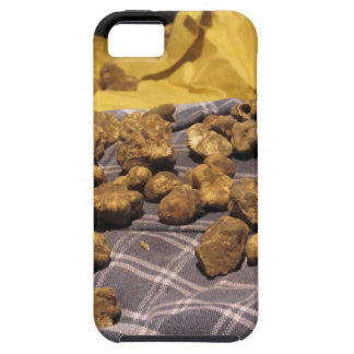 Group of italian expensive white truffles iPhone 5 case
