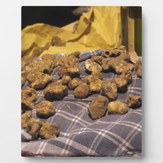 Group of italian expensive white truffles plaque