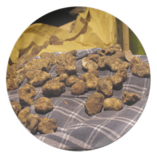 Group of italian expensive white truffles plate