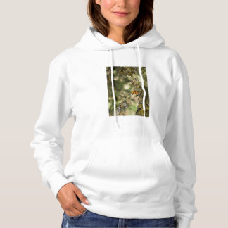 Group of Monarch Butterfies, Mexico Hoodie