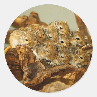 Group of Mongolian Gerbils Meriones Unguiculatus Round Sticker
