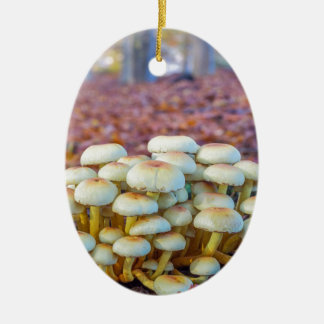 Group of mushrooms in fall beech forest ceramic ornament