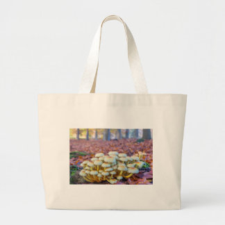 Group of mushrooms in fall beech forest large tote bag