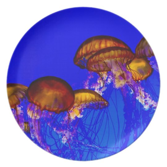 Group of Orange Jelly Fish Plate