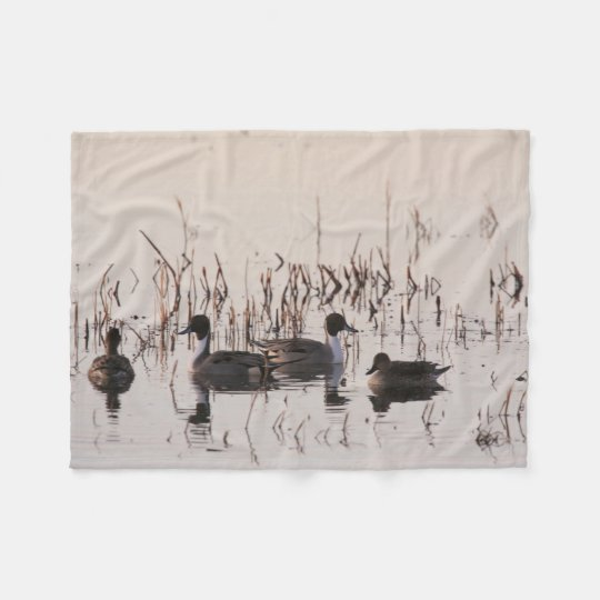 Group of Pintail Ducks Gather and Swims in a lake Fleece Blanket