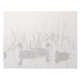 Group of Pintail Ducks Gather and Swims in a lake Notepads