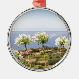 Group of white agapanthus near village and sea metal ornament