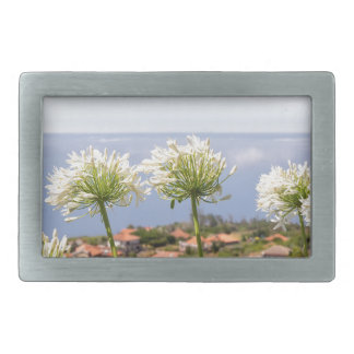 Group of white agapanthus near village and sea rectangular belt buckles