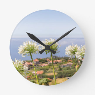 Group of white agapanthus near village and sea wall clocks