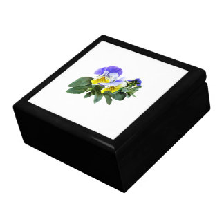 Group Of Yellow And Purple Pansies Gift Box