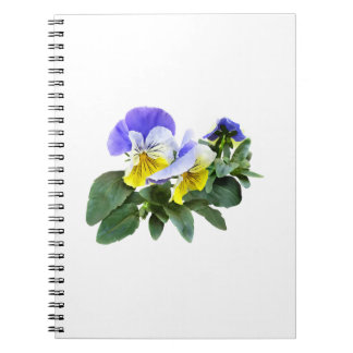 Group Of Yellow And Purple Pansies Notebook