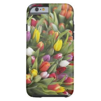 Groupes de tulipes colorées coque iPhone 6 tough
