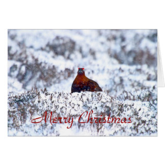 Grouse in a blizzard Merry Christmas Card