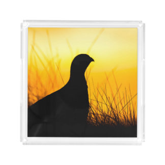 Grouse Silhouette Acrylic Tray