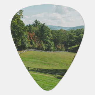 Groverallman Guitar Pick