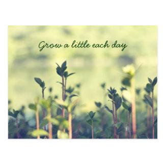 Grow A Little Each Day Inspirational Shoots Greens Postcard