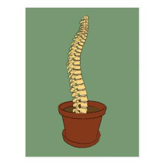Grow A Spine Postcard