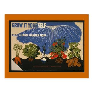 Grow It Yourself Postcard