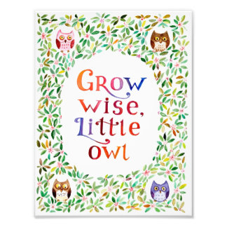 Grow wise little owl  Watercolor painting Photo Print