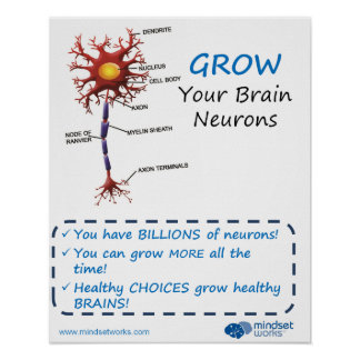 Grow Your Brain Neurons Brainology® Poster