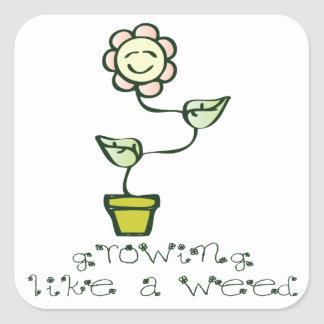 Growing Like a Weed Square Sticker