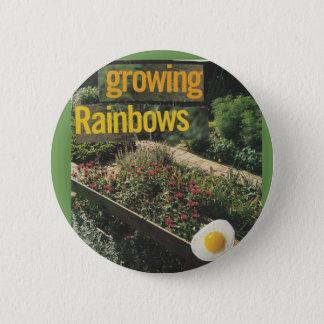 Growing Rainbows   Pin