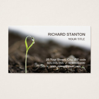 Growing sprout business card