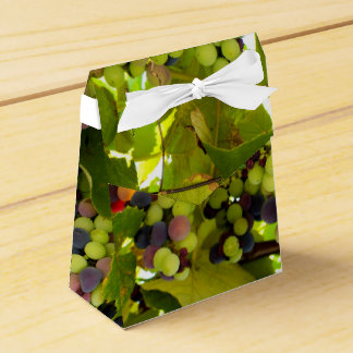 Growing Wine Favor Boxes