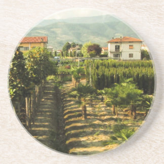 Growing Wine in Tuscany Photo Print Coaster