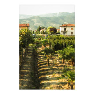Growing Wine in Tuscany Photo Print Stationery