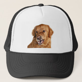 Growling Golden Retriever hat